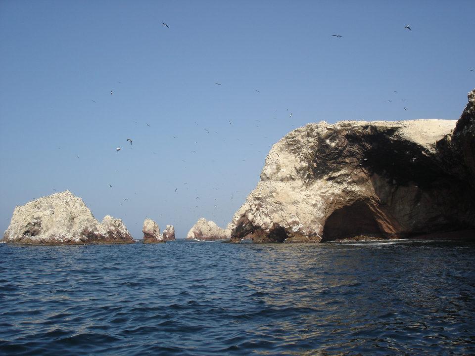 Pictures of Ballestas Islands, Peru